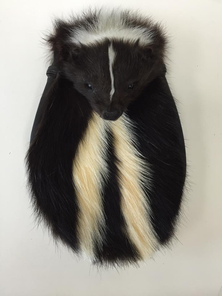 Skunk Full Mask Sporran